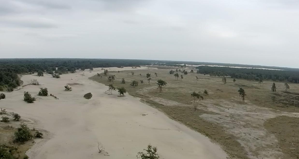 loonse drunense duinen